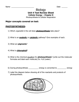 Review Worksheet Answer Key