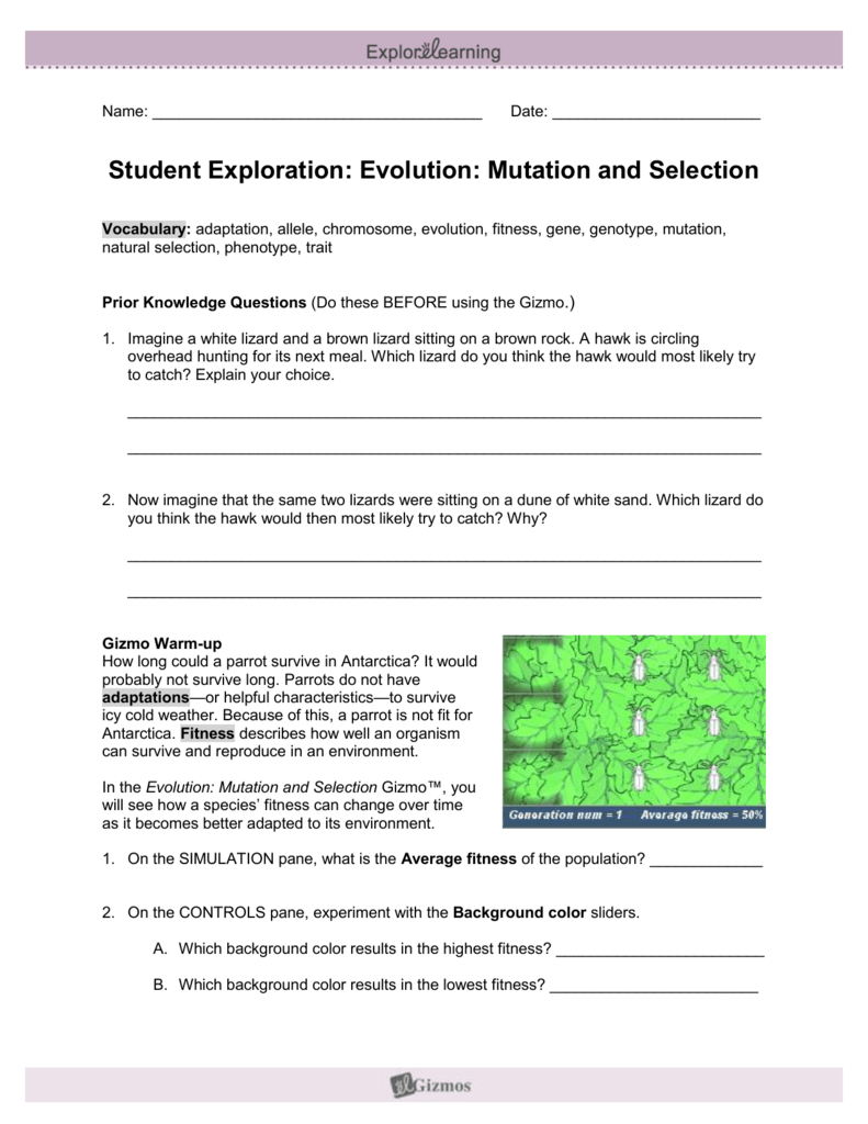 Student Exploration: Evolution: Mutation and Selection