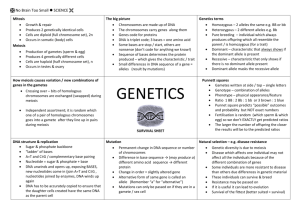 Genetics survival sheet