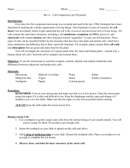 eukaryotic cell lab report Section 7 2 eukaryotic cell structure  solution algebra 2 and trigonometry by davidian answers calorimetry lab report answers past kcse papers answers crayfish.