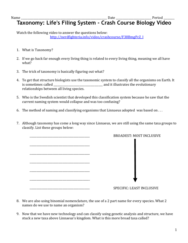 Worksheets Classifying Organisms Worksheet taxonomy video worksheet