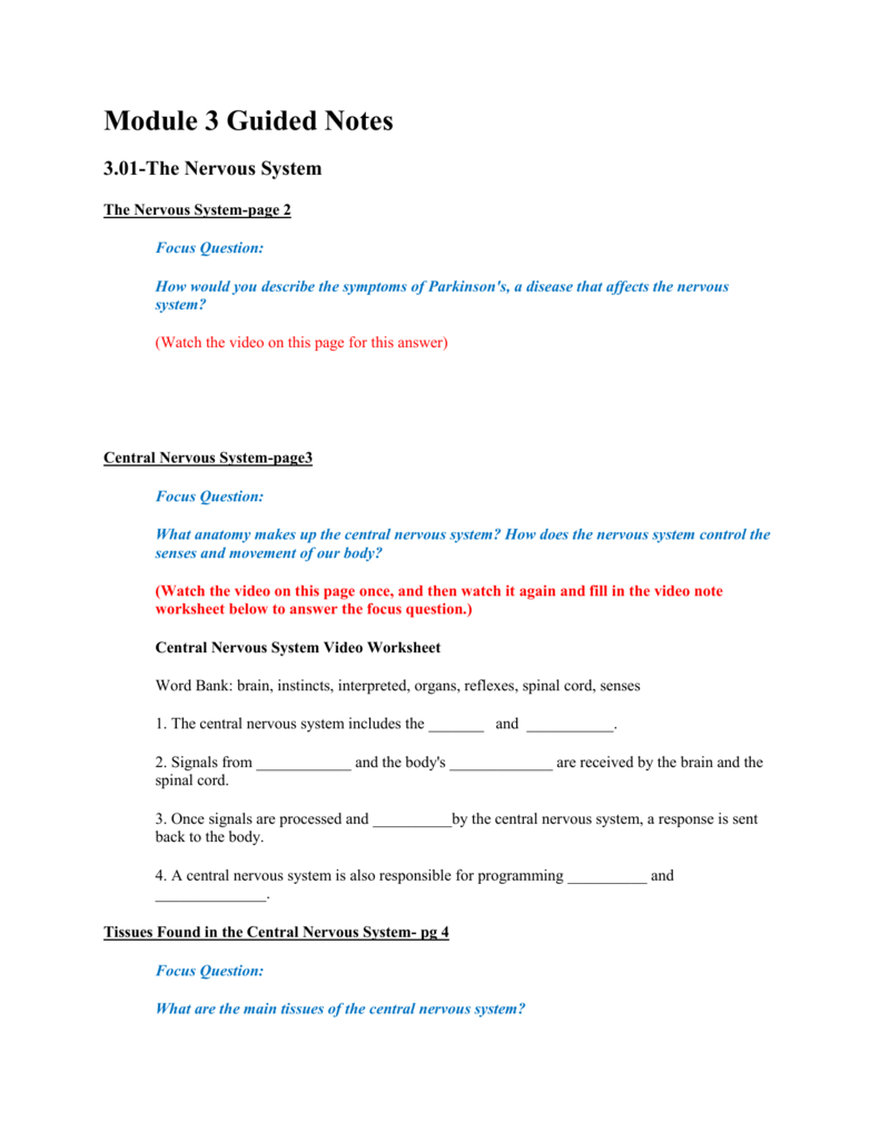 nervous tissue worksheet – Central Nervous System Worksheet