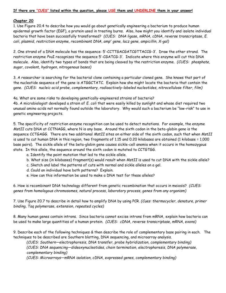 Worksheets Genetic Engineering Worksheet questions chapter 20