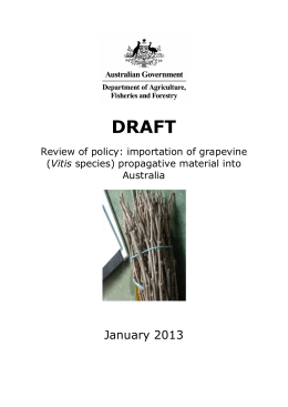 Draft review of policy: Importation of grapevine (Vitis species)