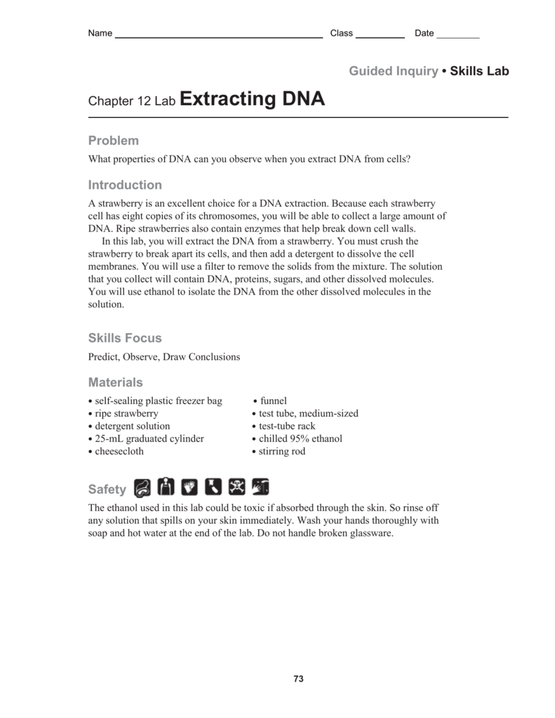 Strawberry Dna Extraction Worksheet - Nidecmege
