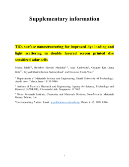 Supplementary information TiO 2 surface nanostructuring for