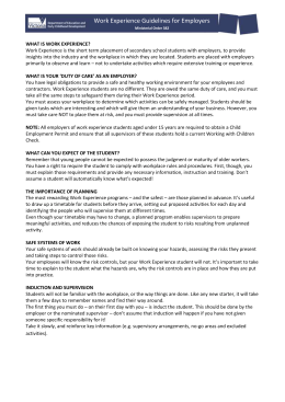 Work Experience Guidelines for Employers (docx