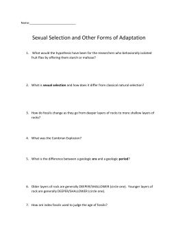 Sexual Selection Adaptive Radiation and Fossils