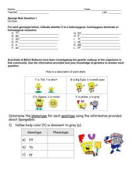 spongebob genetics homework