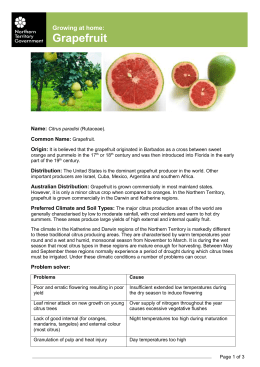 Growing at home- Grapefruit - Northern Territory Government