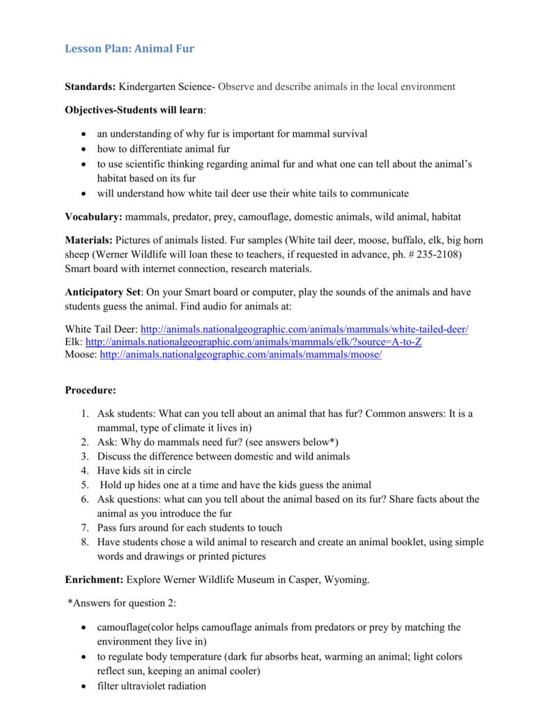 Lesson Plan (Word doc)