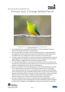Information on the orange bellied parrot