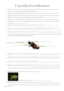 Tropical Rainforest Worksheet Tropical rainforest are found on or