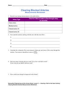 Clearing Blocked Arteries Measurements Worksheet (doc)