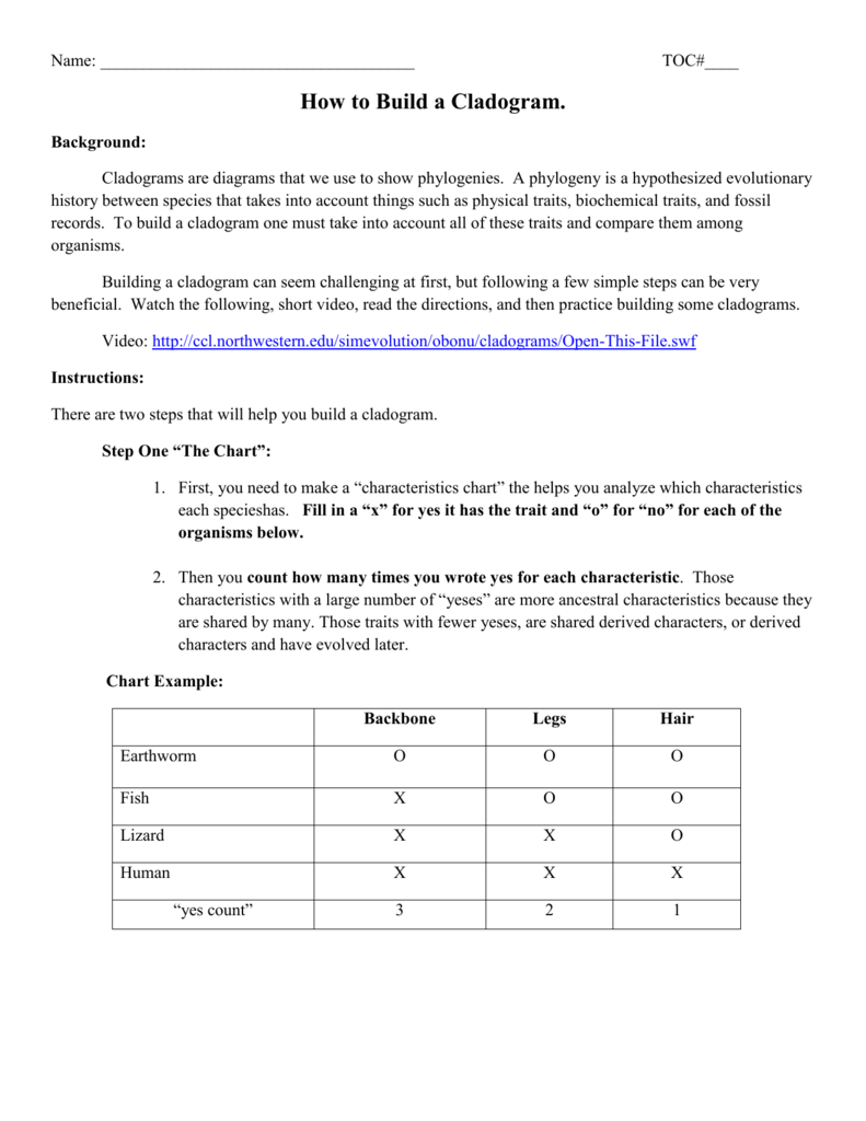 Cladogram worksheet answers venn diagram