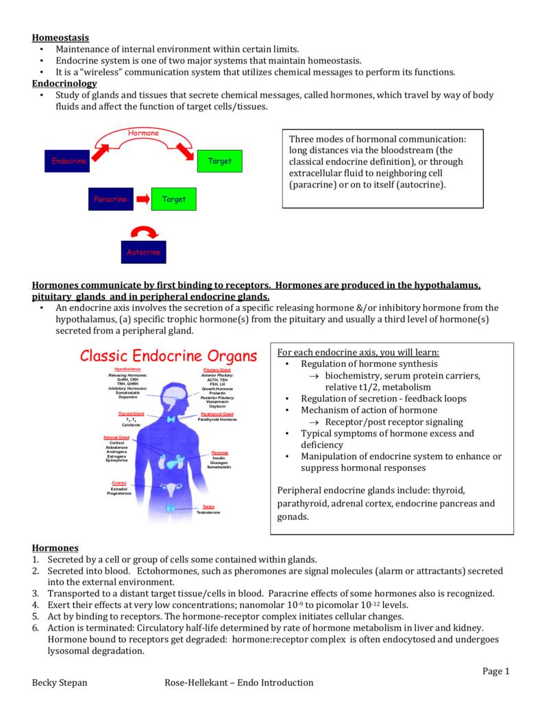 Endocrineconcepts
