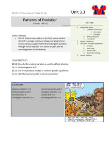 Unit 3.3 - Patterns of Evolution