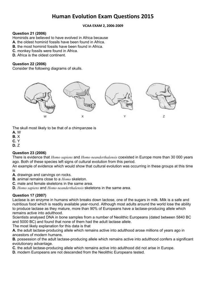 human evolution worksheet the best and most comprehensive worksheets. Black Bedroom Furniture Sets. Home Design Ideas
