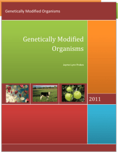 File - Genetically Modified Organisms