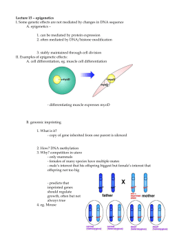 Nc biology assessment examples underline the main question epigenetics ccuart Gallery