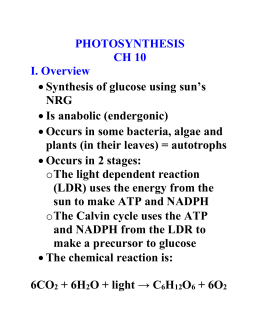 PHOTOSYNTHESIS CH 10 I. Overview Synthesis of glucose using