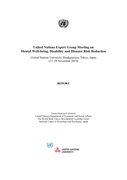 United Nations Expert Group Meeting on Mental Well