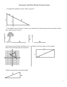 Geometry 2nd Nine Weeks Practice Exam