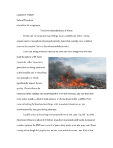 environmental issues paper
