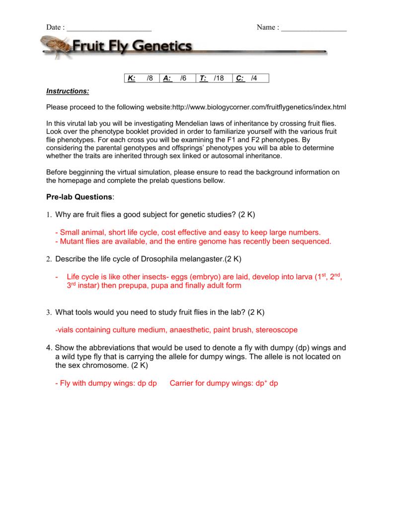 Answer Key 2 - OISE-IS-BIOLOGY-2011-2012