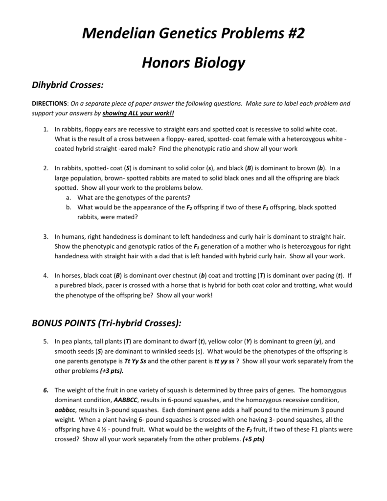 Mendelian Genetics Problems 2 Honors Biology