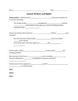 Animal Rights Worksheet - Montgomery County Schools