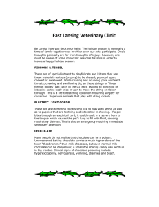 East Lansing Veterinary Clinic