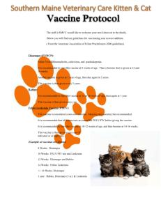 Feline vaccine schedule