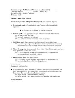 Vertebrate zoology study guide essay
