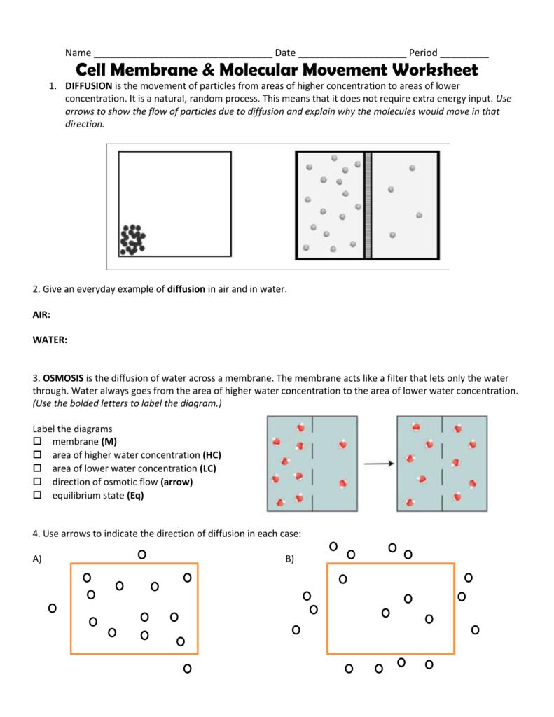 worksheet diffusion worksheet grass fedjp worksheet study site. Black Bedroom Furniture Sets. Home Design Ideas