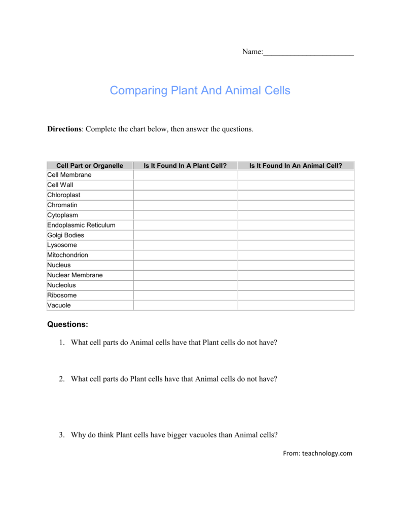 Name Comparing Plant And Animal Cells Directions Complete the – Comparing Plant and Animal Cells Worksheet
