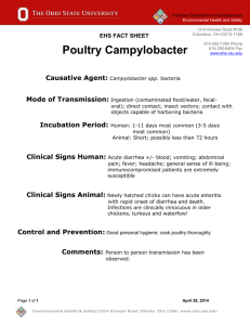 Poultry Campylobacter Fact Sheet