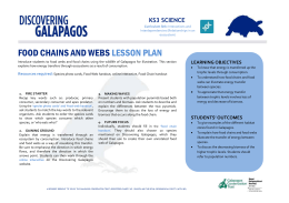 1B2 Food Chains and Webs MSWord Lesson Plan Science KS3