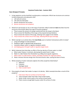 Keystone Practice Quiz Summer 2014 w/answers
