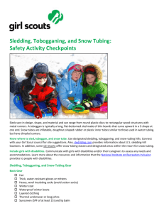 Sledding Tobogganing Snow Tubing Safety Activity Checkpoint