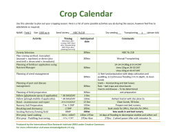 Crop calendar example - Rice Knowledge Bank