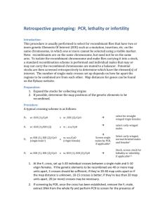 Retrospective genotyping (by PCR, lethality, or infertility)