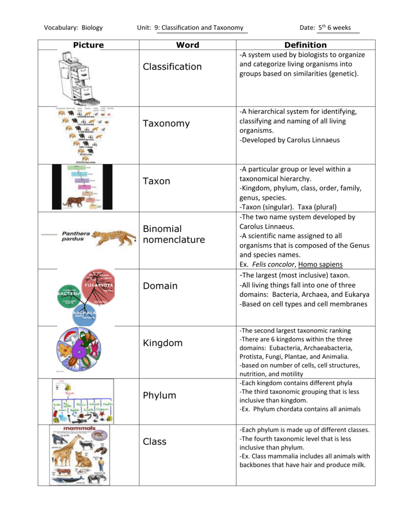 Vocabulary: Biology Unit: 9: Classification and Taxonomy