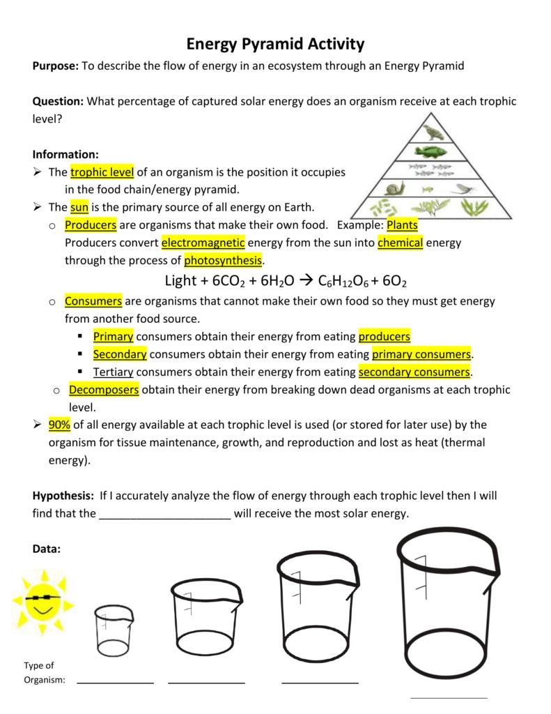 Energy Pyramid Analysis