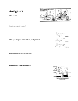 Analgesics - Worksheet