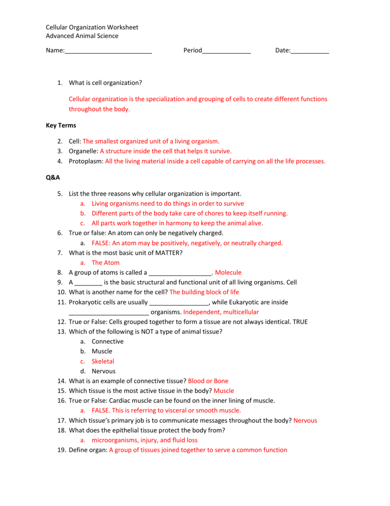 Cellular Organization Worksheet Advanced Animal Science Name – Cell Specialization Worksheet
