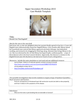 US-CaseModuleTemplate-2014-ragdoll case study