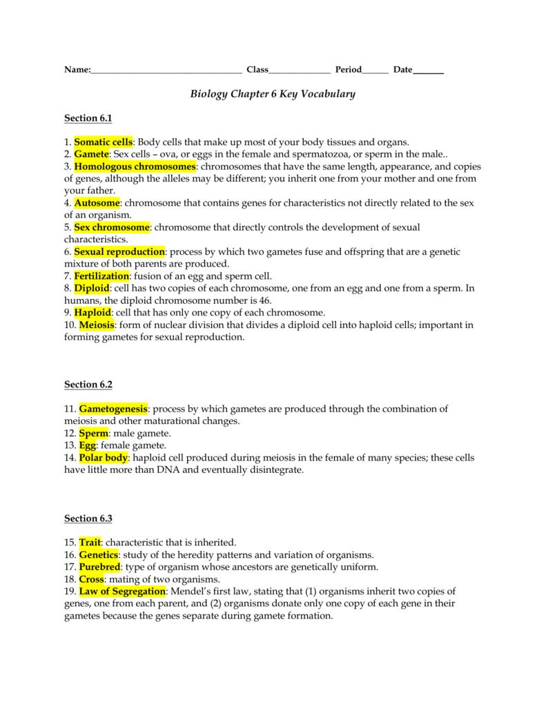 Biology Chapter 6 Key Vocabulary