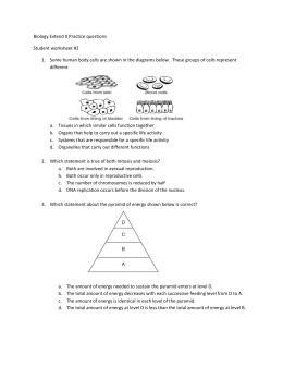 Biology Extend II Practice questions Student worksheet #2 Some