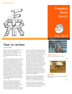 Year in review - Freedom Reins Ranch